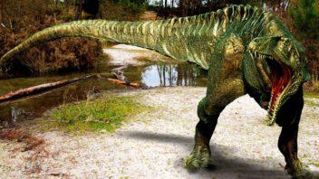 Acrocantosauro