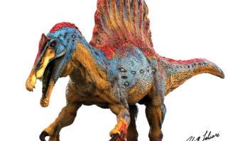 Più grande del T Rex. Lo Spinosauro