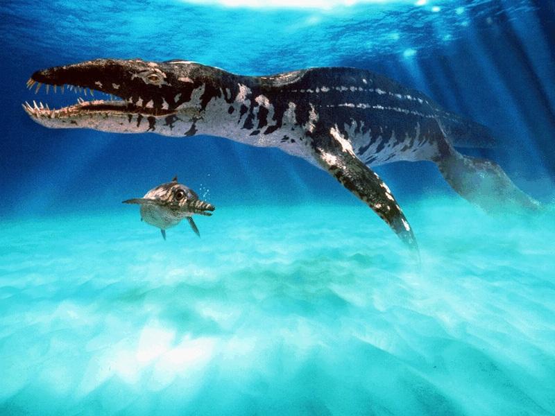 liopleurodon in acqua